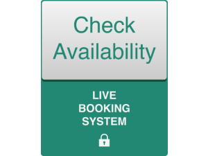 Check availability icon