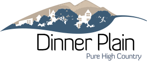 diinerplain-logo