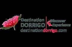 Destination Dorrigo logo