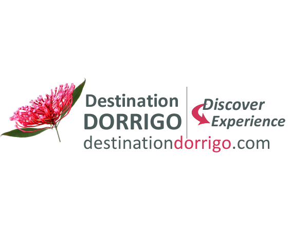 Destination Dorrigo logo